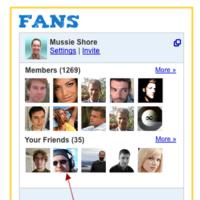 Google Friend Connect con Twitter