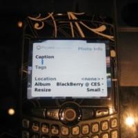 Google prepara Picasa para Blackberry