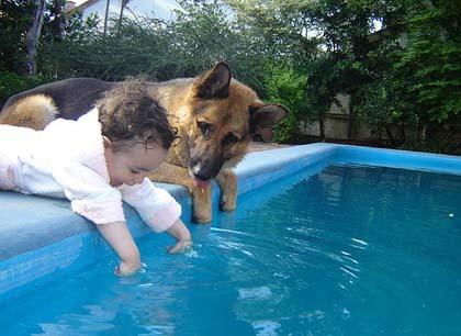 La foto de tu bebé: el perro, el mejor amigo del bebé