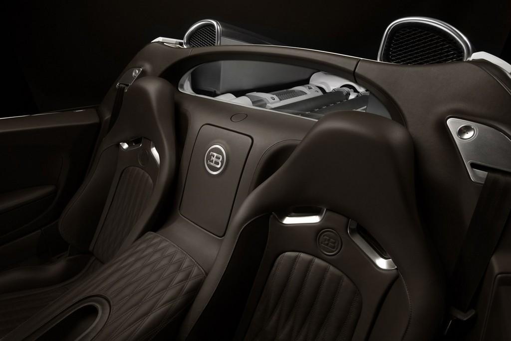 Foto de Bugatti Veyron Grand Sport (25/29)