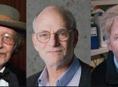 """Las entrañas moleculares de nuestro """"reloj biológico"""" se llevan Premio Nobel de Medicina 2017"""