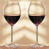 18 centilitros de vino no dan positivo en el test de alcoholemia