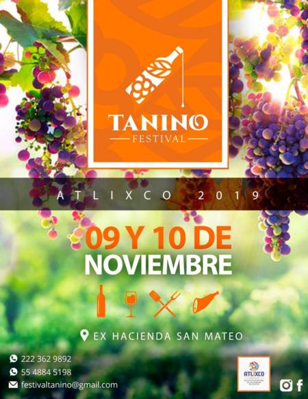 Visual Tanino