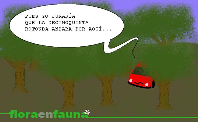 fauna en ruta: bosques en la carretera