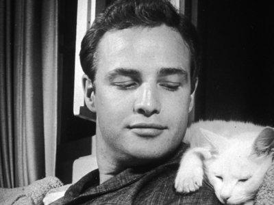 El imprescindible Marlon Brando
