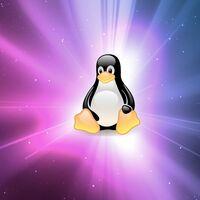 Linux Mint se pondrá más pesado con las actualizaciones pero el  usuario manda: por qué en Windows es difícil algo así