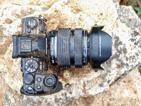 Olympus OM-D E-M1 Mark II, Fujifilm X-T3, Canon EOS 250D y más cámaras, objetivos y accesorios en oferta: Llega Cazando Gangas