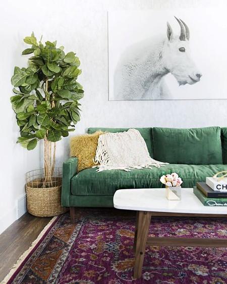 Sofa Verde 12
