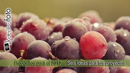 Propósitos para el 2012... Seis ideas para tus proyectos