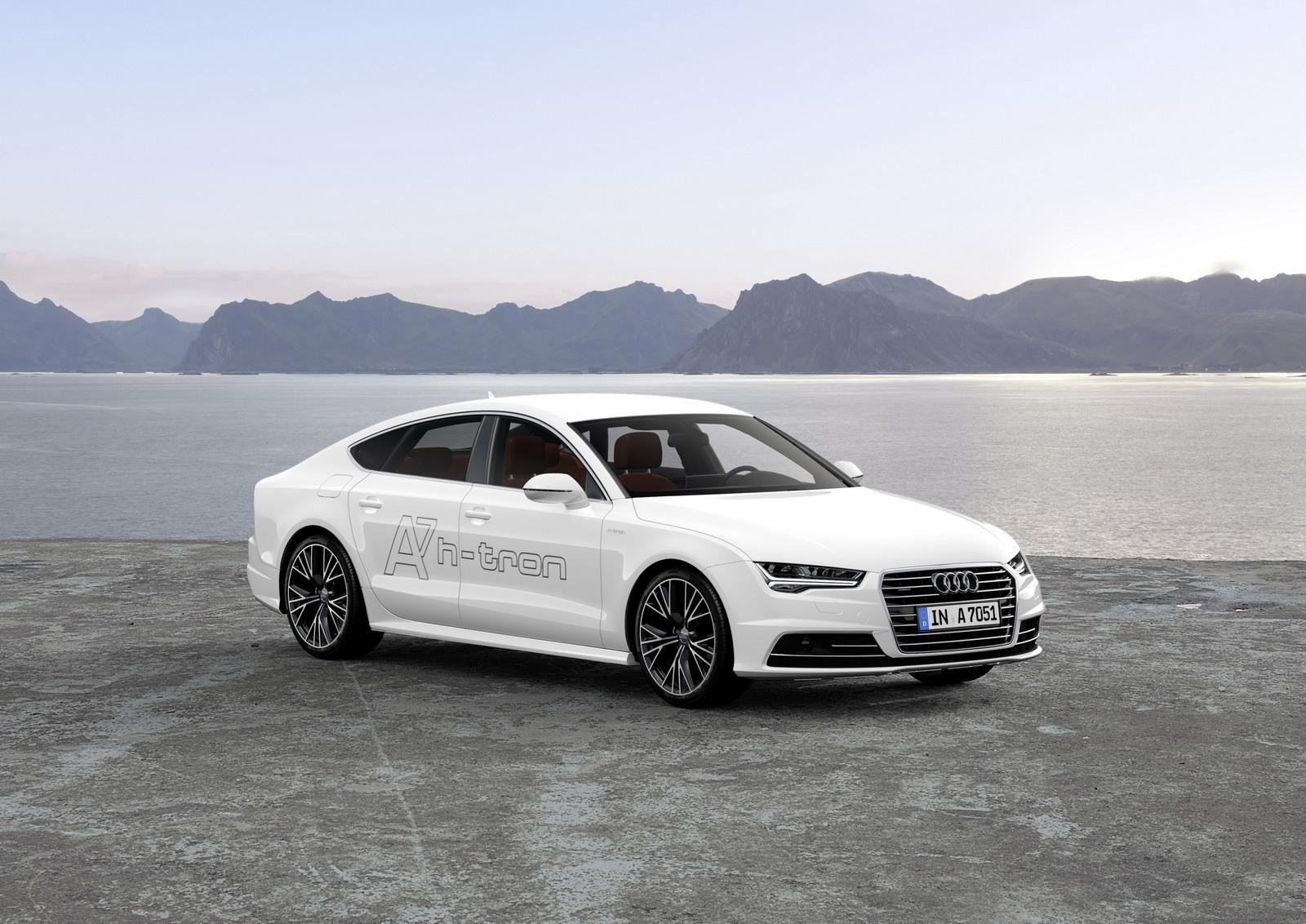 Foto de Audi A7 Sportback h-tron quattro (47/49)