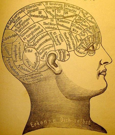 phrenology1.jpg