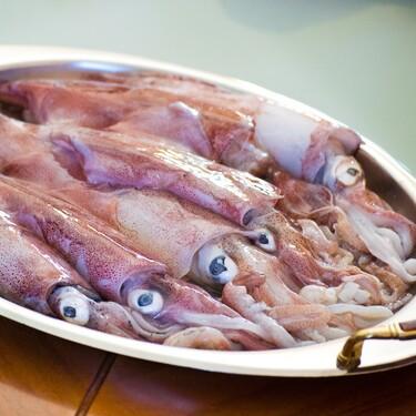 Cómo limpiar y preparar los calamares para su uso en la cocina