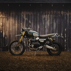 Foto 48 de 69 de la galería triumph-scrambler-1200-2021 en Motorpasion Moto