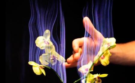 Botanicus Interacticus, o cómo convertir las plantas en interfaces táctiles digitales