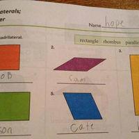 Estos alumnos se equivocaron tanto en sus exámenes que terminaron acertando