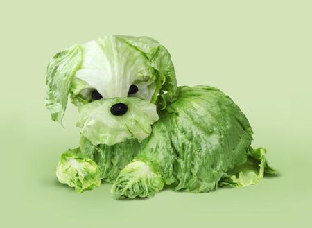 Crunchy Green