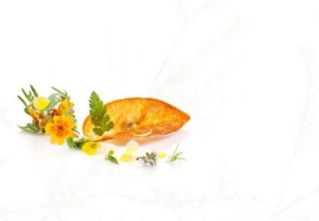 Libro de cocina Metamorphosis de Mielcke & Hurtigkarl