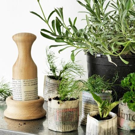 Botanisk Mould For Paper Pot 0803083 Pe768741 S5