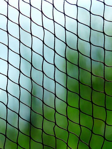Cosmética reafirmante: tenemos un 75% de fibras de colágeno que mantener