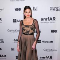 Gabriela Isler amfAR 2014