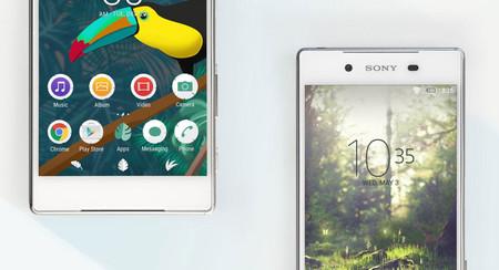 No más Xperia Themes para el Sony Xperia XZ3, y quizá tampoco para los nuevos modelos