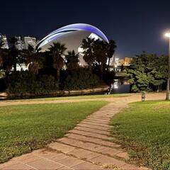 Foto 9 de 31 de la galería iphone-12-pro-max-fotos-en-baja-luminosidad en Applesfera