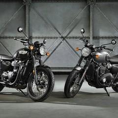 Foto 49 de 50 de la galería triumph-bonneville-t100-y-t100-black-y-triumph-street-cup-1 en Motorpasion Moto