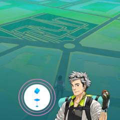 Foto 9 de 12 de la galería pokemon-go en Xataka