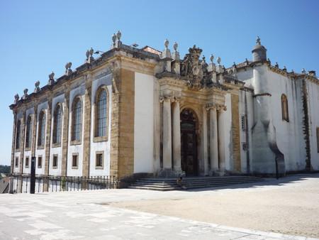 Las bibliotecas portuguesas están infestadas de murciélagos y eso es bueno para los libros
