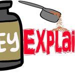 ¿Qué es la proteína de suero?