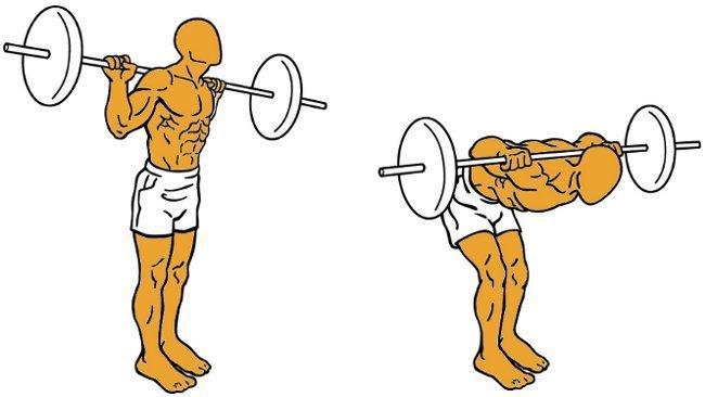 ejercicios para flexion de tronco