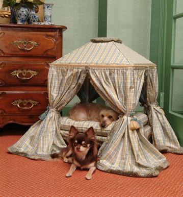 Precious palaces y the pet projet todo para tus mascotas - Todo para nuestras mascotas ...