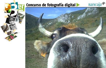 3ª Edición del Concurso de Fotografía Digital de Bancaja