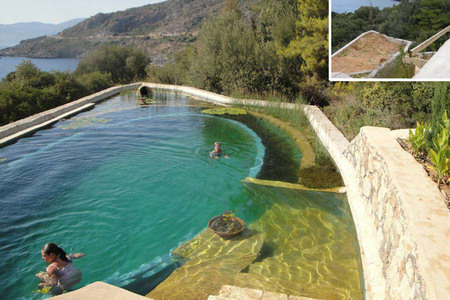 C mo conseguir una piscina ecol gica for Como hacer una alberca ecologica