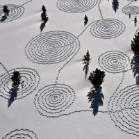 Los dibujos en la nieve nunca han sido tan extraordinarios como en el arte de Sonja Hinrichsen