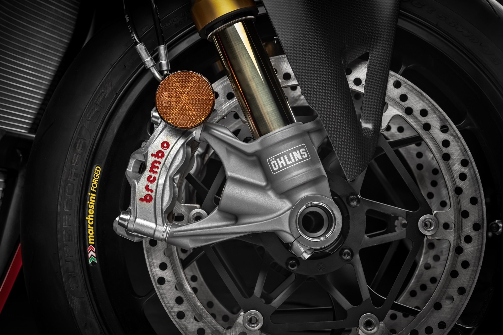 Foto de Ducati Panigale V4 R 2019 (75/87)