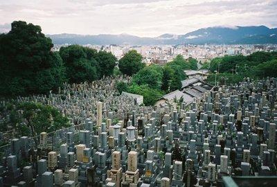 ¿Cuánto terreno se necesita para enterrar a toda la gente que muere en un año?