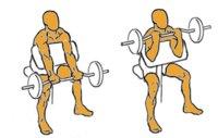 Guía para principiantes (XLIV): Bíceps en banco scott