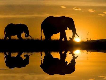 ¿Por qué África es un gran, gran, gran desconocido?