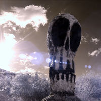 'Nessun Dorma', un timelapse 4K de fotografía infrarroja para elogiar la belleza de la naturaleza muerta