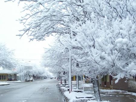 ECO-FLAPS: Prueba de larga duración (invierno)