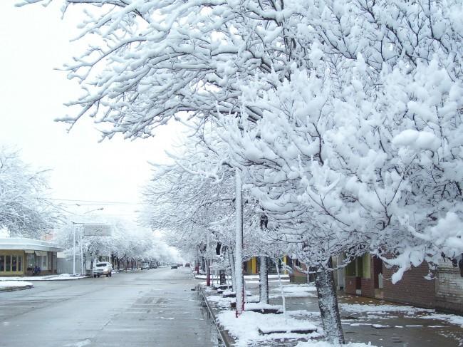 nieve invernal fria