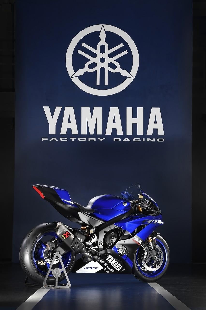 Foto de Yamaha YZF-R6 2017 Race Ready (16/27)