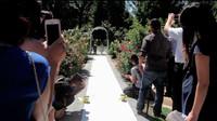 Cuando los smartphones y otras cámaras son el enemigo del fotógrafo de bodas