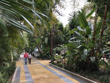 Parque Alameda