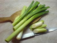 Ajo puerro, una manera diferente de obtener antioxidantes