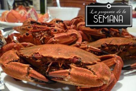 ¿Compráis marisco o pescado on line o seguís prefiriendo la tienda habitual?