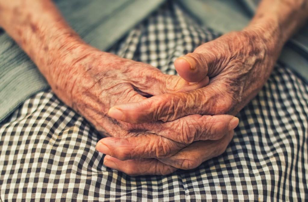 Por qué vivimos 90 años y la mosca de la fruta solo 15 días: el ritmo de acortamiento de los telómeros predice la longevidad