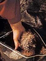 Virutas de roble en la crianza de los vinos
