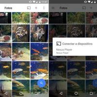 Google Fotos 1.6 para Android: soporte Chromecast y etiquetas privadas